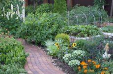 Что значит видеть во сне огород