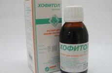 Дешевые аналоги и заменители препарата хофитол для детей и взрослых
