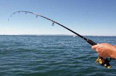 Что значит видеть во сне рыбалку женщине и мужчине?