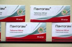 Дешевые аналоги и заменители препарата пантогам для детей и взрослых