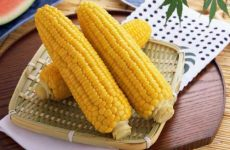 Как правильно хранить кукурузу в початках в домашних условиях на зиму?