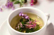 Иван чай: как правильно заваривать в домашних условиях