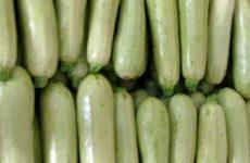 Как правильно хранить кабачки на зиму в домашних условиях?