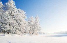 Что значит видеть во сне зиму?