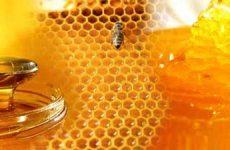 Что значит видеть во сне мёд женщине и мужчине?