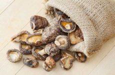 Как правильно хранить сушеные грибы в домашних условиях?