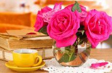 Как сохранить букет роз в вазе дольше?