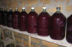 Хранение домашнего вина в пластиковых бутылках